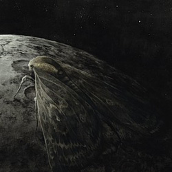 Augrimmer - Moth and the Moon - cover